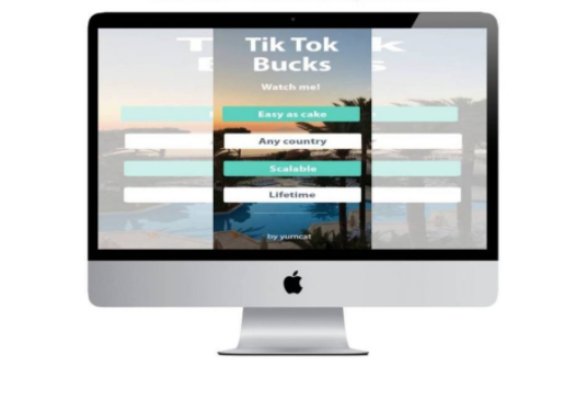 Tik Tok Bucks – Watch Me! $300 Daily with Unique Method (Ebook)