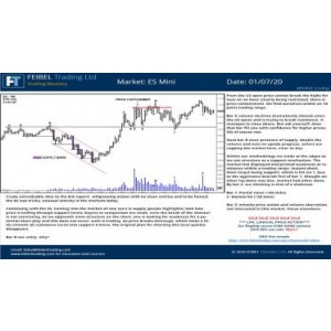 [Download] Logical Price Action – Feibel Trading